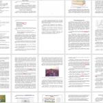 Иллюстрация №1: ОПЫТНЫЕ И ПОЛЕВЫЕ РАБОТЫ СЕЙСМОПАРТИИ. РАЗВИТИЕ МЕТОДИК 2D НАБЛЮДЕНИЙ (Дипломные работы - Геология).