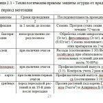 Иллюстрация №4: Сравнительная оценка влияния биологических и химических средств защиты огурца на поражаемость болезнями в условиях защищенного грунта (Дипломные работы - Биология, Химия).