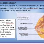 Иллюстрация №3: сестринский процесс в профилактике мастита (Презентации - Медицина).